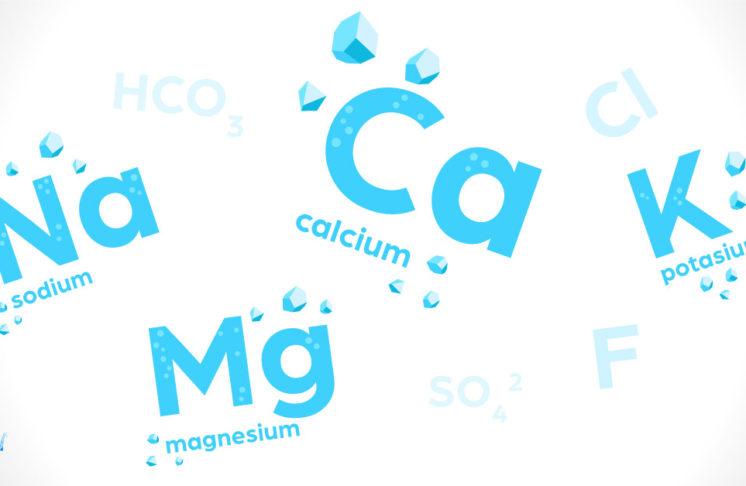 Jakie składniki mineralne powinny znaleźć się w wodzie?
